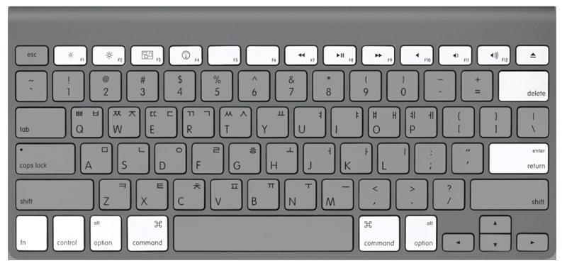 Apple Wireless Keyboard 특수 키