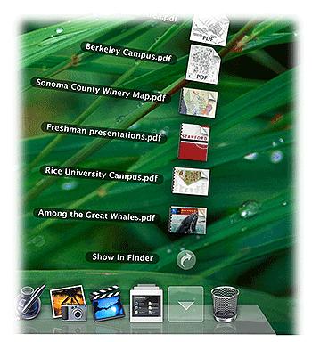 launcher mac pour windows