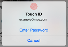 Touch ID, enter password, or cancel
