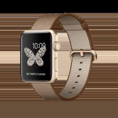 caja de cartón Oeste cebra  Apple Watch Series 2 - Technical Specifications