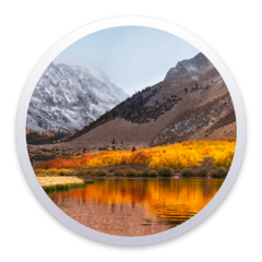 3a3510191769 Download Security Update 2019-002 (High Sierra)